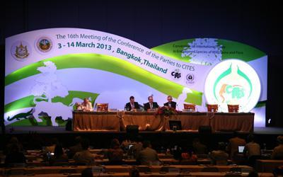Referenz: CITES CoP16 Konferenztechnik der Brähler ICS AG bei der Artenschutzkonferenz der Vereinten Nationen in Bangkok im Einsatz.