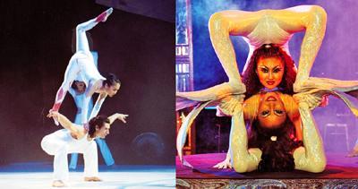 Auftragsshows Kooperationen und Kreationen unter Mitarbeit von Lotta Svalberg und Pascal Sani. Betrifft Tanz, Choreographie, Casting, oder das gesamte Arrangement.