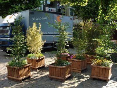 Diverse einheimische Büsche im Holzgefäß für die Begrünung einer Geschäftsstraße