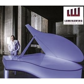 Luminawing - virtuose Livemusik in edlem Design