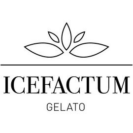 ICEFACTUM -  THE EXPECT NOTHING LESS COMPANY GMBH